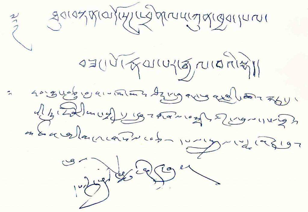 Penor-Rinpoche-assertion
